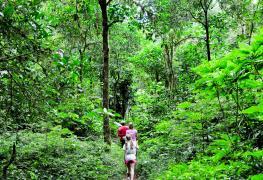 trekking tour bali