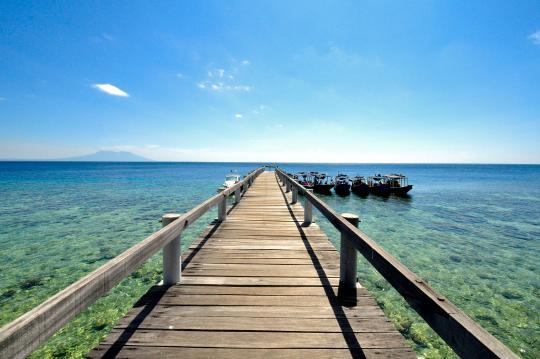Menjangan Island Bali